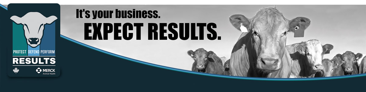 It's your business. Expect Results.